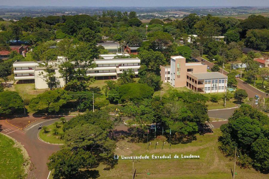 UEL recebe mais de 300 bolsas de ensino, pesquisa e extensão para estudantes dos cursos de graduação
