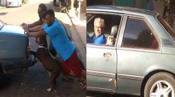 Cachorro ajuda a empurrar carro quebrado enquanto gato acompanha tutor no banco do motorista