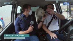 Uber Pet exclusivo para seu animal de estimação