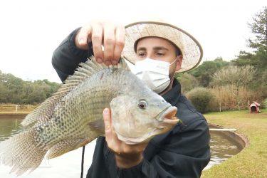 Produtores rurais recebem incentivos para investir na piscicultura