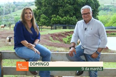Confira os destaques do RIC Rural de domingo (12 de setembro)