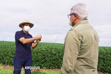 Ferramentas da Agricultura de Precisão para liquidar plantas indesejáveis