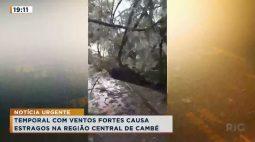 Temporal com ventos fortes causa estragos na região central de Cambé
