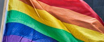Em sessão cheia de antagonismos, criação do Conselho dos Direitos LGBTQIA+ em Londrina é rejeitada