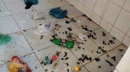 Criança autista vítima de maus tratos é encontrada comendo fezes de cachorro para sobreviver