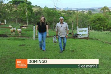 Confira os destaques do RIC Rural de domingo (19 de setembro)
