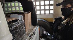 Kombi recheada com meia tonelada de maconha é apreendida no centro de Curitiba