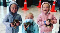 Médica é presa suspeita de assassinar as três filhas dentro de casa