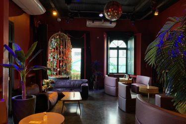 Paradis retorna às atividades em formato de Coquetel Bar