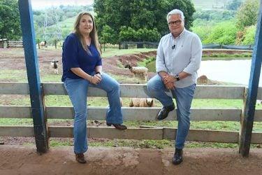 Mamão gigante, receita de joelho de porco e internet no campo são alguns destaques do RIC Rural