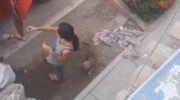 VÍDEO: Cachorro é esquecido no mercado e volta para casa sozinho de moto-táxi