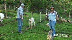 Confira os destaques do RIC Rural de domingo (17 de outubro)