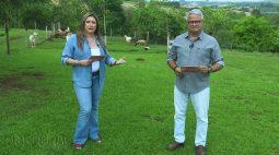 Prêmio Orgulho da Terra do Grupo RIC