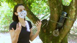 Laranja, abelhas e preservação ambiental | RALLY DA PRODUTIVIDADE