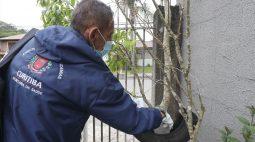 Curitiba tem 0% de infestação de Aedes aegypti pelo quinto ano consecutivo