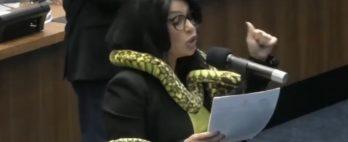 Deputada aparece em sessão de assembleia com cobra de pelúcia no ombro