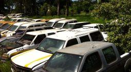 Secretaria promove leilão online de 320 carros no oeste do Paraná