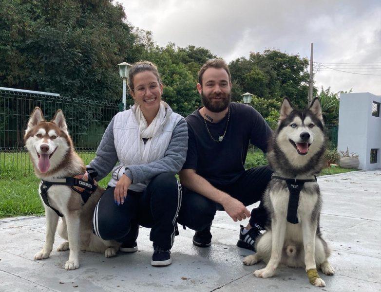 Família pet mais seguida do Brasil é de Curitiba: conheça os cães Gudan e Blant