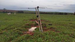 270 postes de energia foram quebrados com temporal registrado no Oeste