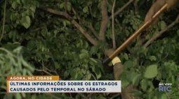 Cidade Alerta Londrina Ao Vivo | Assista à íntegra de hoje –  25/10/2021