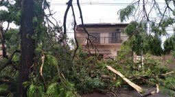 Mais de 285 mil residências seguem sem luz no Paraná, diz Copel