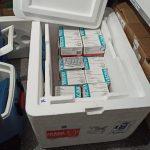 Temporal pode ter estragado 24 mil doses de vacinas contra Covid-19 de 28 cidades no noroeste do PR