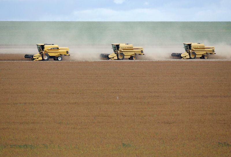 Vendas de soja atingem 34,6% da safra 21/22 em MT, diz Imea; preço menor desacelera negócios