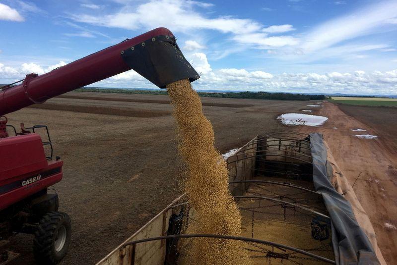 Importação de soja pela China salta 11,6% em junho ante maio com aumento da demanda
