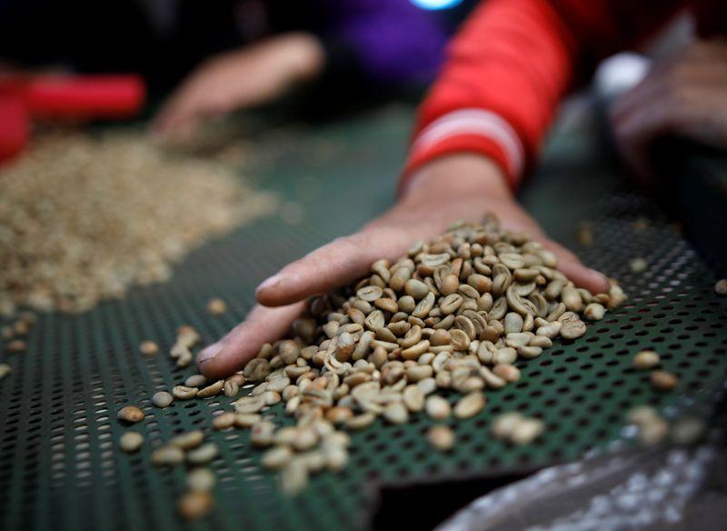 Estoque de café verde recua nos EUA, se aproxima da mínima em 6 anos