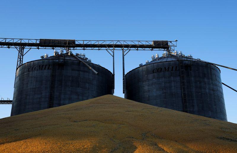 Colheita de milho safrinha em Mato Grosso vai a 72,8% da área, mas mantém atraso, diz Imea