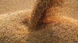 Anec reduz previsões de exportações de soja e milho do Brasil em julho