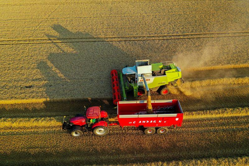 UE eleva safra de trigo 2021/22 para 127,7 milhões de toneladas