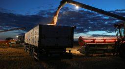 Sovecon corta previsão para safra de trigo da Rússia em 2021