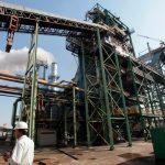 Termelétricas à biomassa podem ofertar geração adicional ao ONS a partir de quarta