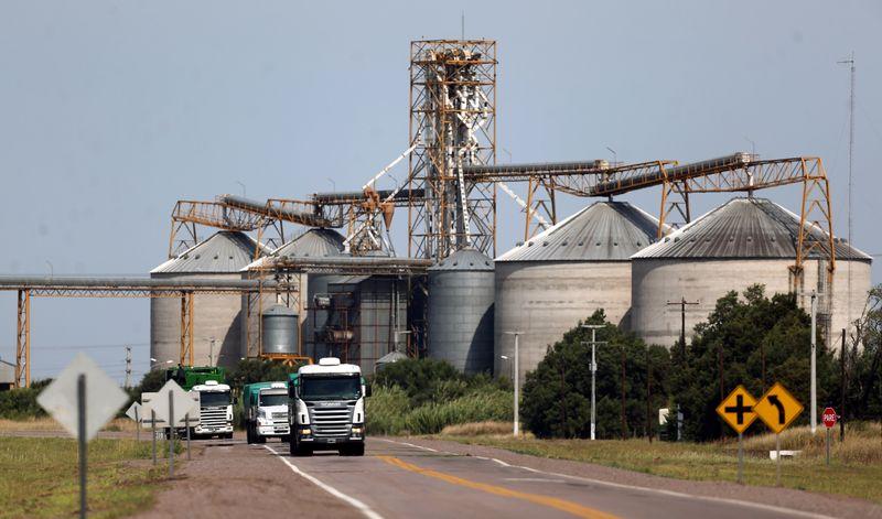 Greve de caminhoneiros interrompe chegada de grãos ao porto argentino de Bahía Blanca