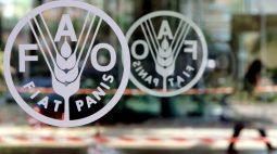 Preços dos alimentos no mundo caem pelo segundo mês em julho, diz FAO