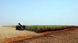 Preços do açúcar avançam quase 4% na ICE com especulações sobre corte de produção no Brasil