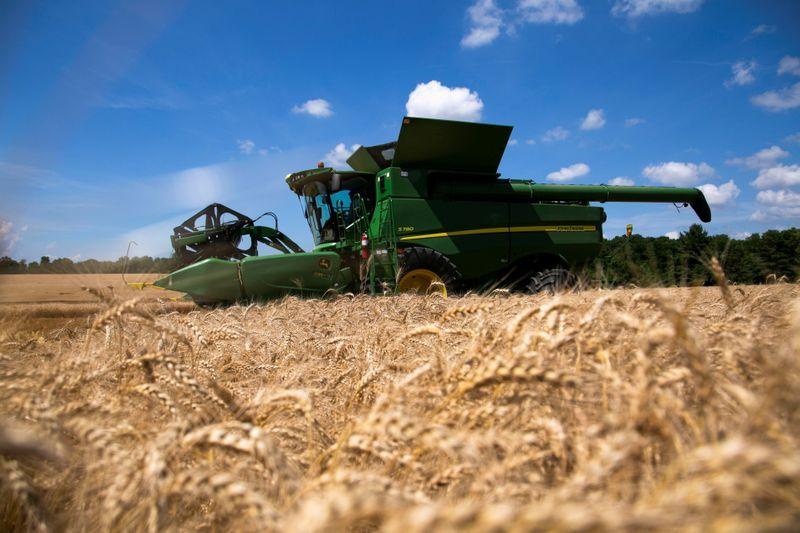 Trigo avança 2% em Chicago com cortes de ofertas globais; milho sobe e soja recua