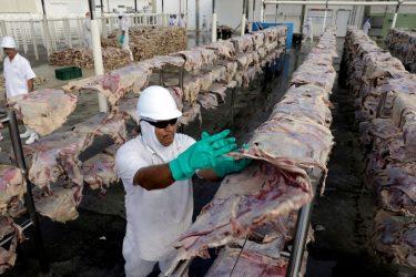 Rússia restringe compra de carne bovina do Brasil após casos de 'vaca louca'
