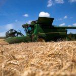 Colheita dos EUA atinge 10% do milho e 6% da soja; avaliações melhoram, diz USDA
