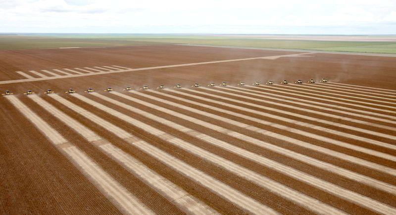 Anec eleva previsão de exportação de soja do Brasil em setembro; reduz a de milho