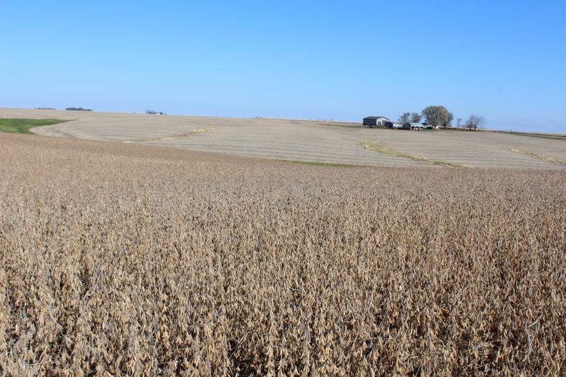 ENFOQUE-Agricultores dos EUA enfrentam escassez de insumos e custos mais altos após Ida