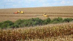 Esmagamento de soja de setembro atinge mínima de 3 meses com 153,800 mi de bushels, diz Nopa