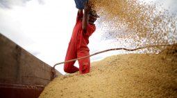 Milho avança em Chicago com dados de exportação dos EUA; soja e trigo também sobem