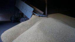 Colheita de grãos da Ucrânia em 2021 atinge 73% com 52 milhões de toneladas