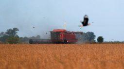 Milho, soja e trigo avançam em Chicago com forte demanda mundial