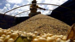 Plantio de soja avança para 68,7% da área em Mato Grosso, diz Imea