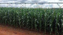Preços de insumos agrícolas mais que dobram em 2021, elevam custos de 2022, diz CNA