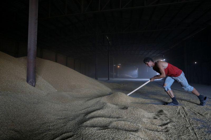 Ucrânia inicia temporada 2021/22 com exportação de 128 mil t de grãos