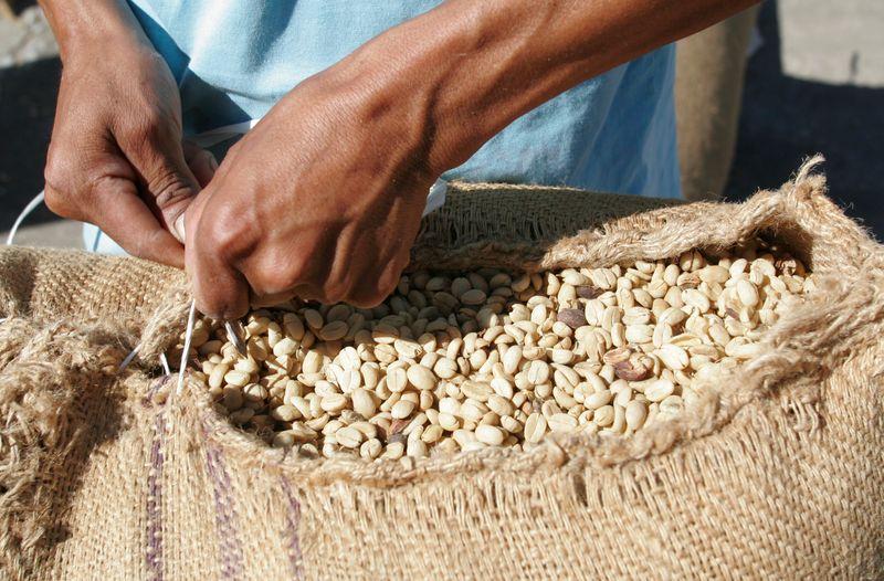 Açúcar bruto e café arábica fecham em queda com pressão de vendas generalizadas
